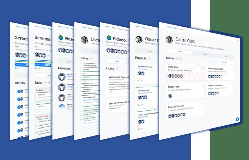 Project Management Professional Business Platform